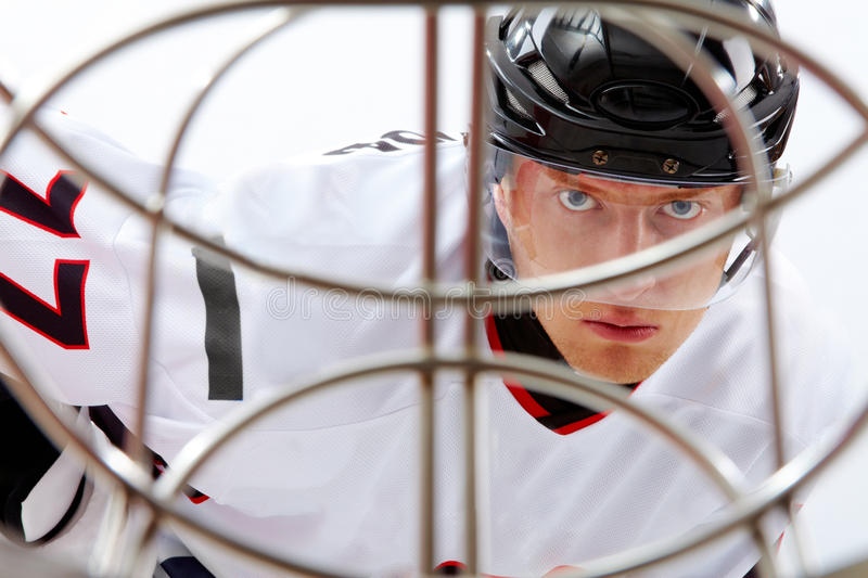Hockey player. Portrait of healthy sportsman in hockey uniform during game royalty free stock photo