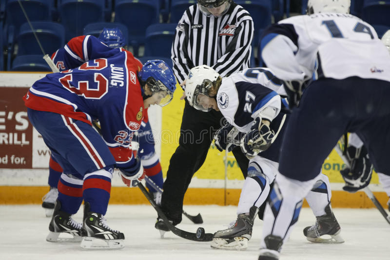 Download Hockey Players in Action editorial photo. Image of protective - 18169941