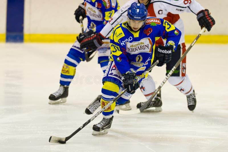 Hockey sobre hielo fotografía de archivo libre de regalías