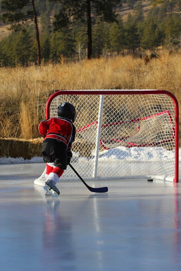 hockeydamm arkivbild