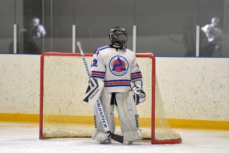 Hockeygoalie på porten arkivfoton