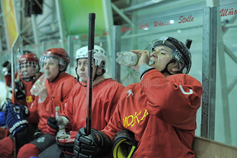 Hockeylek arkivfoto