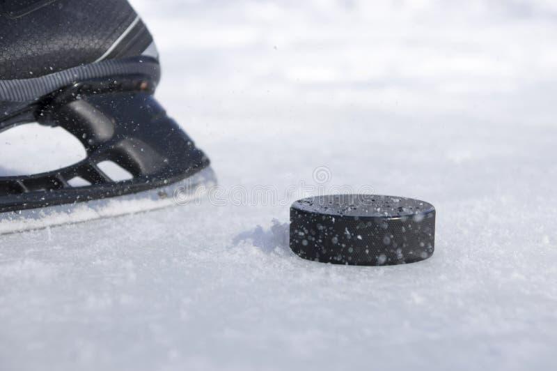 Hockeyrochen und -kobold lizenzfreies stockfoto