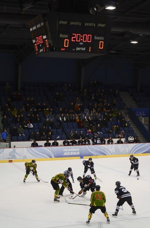 Hockeyspiel stockfotografie