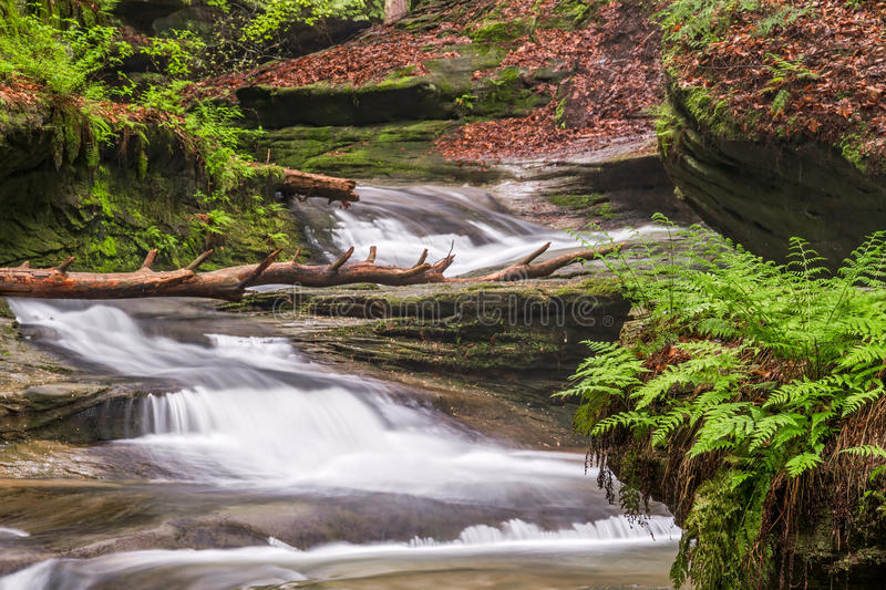 Hocking Hills Cascade. Cascading waterfalls flow down the gorge at Old Man's Cave in Ohio's Hocking Hills State Park stock photography