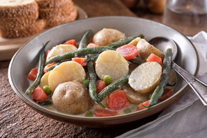 Hodge Podge Vegetable Stew stock images