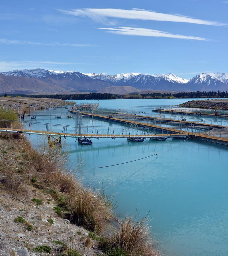 Hodowla łososia na jeziorze Ruataniwha, Central Otago, Nowa Zelandia fotografia royalty free