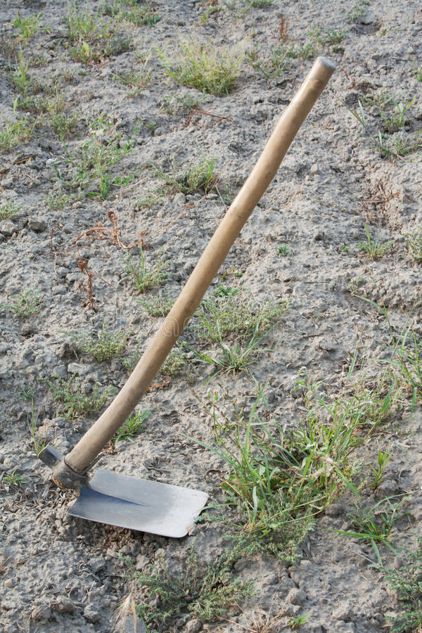 Hoe, a garden tool. A hoe (garden tool) with land and weeds as a background royalty free stock image