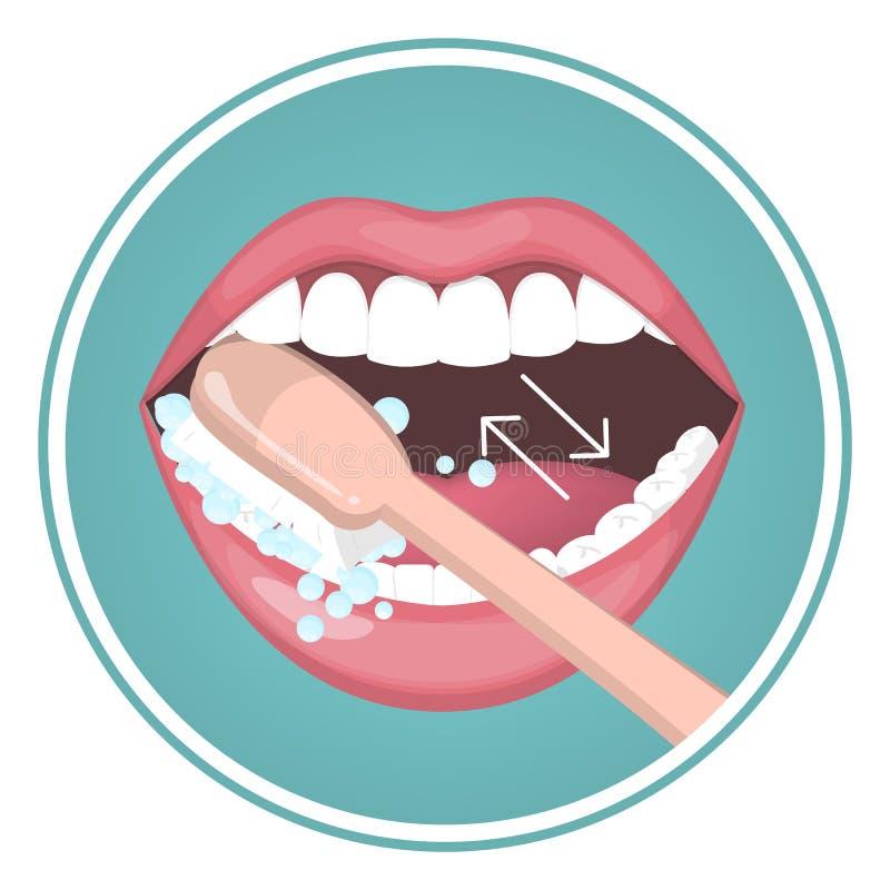 Hoe te om uw tanden met tandenborstel te borstelen royalty-vrije illustratie