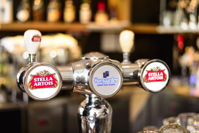Hoegaarden och Stella Artois öl royaltyfri foto