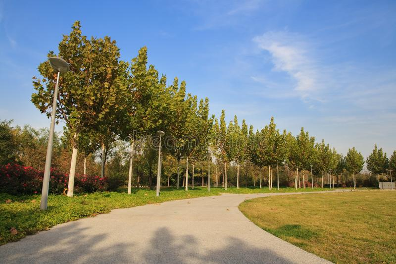 Hoek in Olympisch Park, Peking