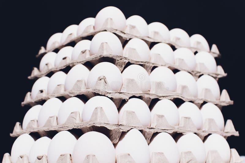 Hoek van een dienblad van eieren op zwarte achtergrond 5 pakken stock afbeeldingen