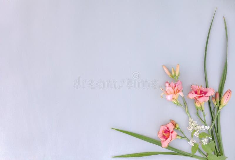Hoekframe met bloemen van linten op grijs papier stock fotografie