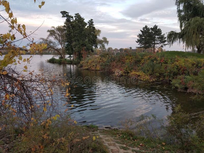 Hoekglimp van Ford Lake stock afbeeldingen