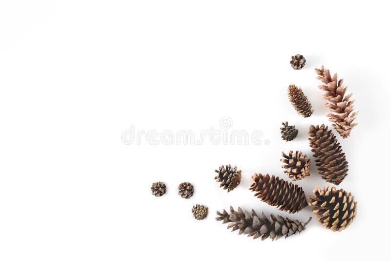 Hoekkader van kegels diverse naalddiebomen wordt gemaakt op wit, mening die hierboven worden geïsoleerd van Vrije exemplaarruimte stock fotografie