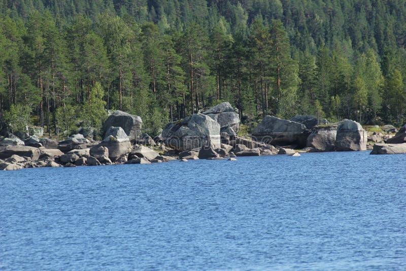 Hoeljessjoen W Szwecja obraz royalty free