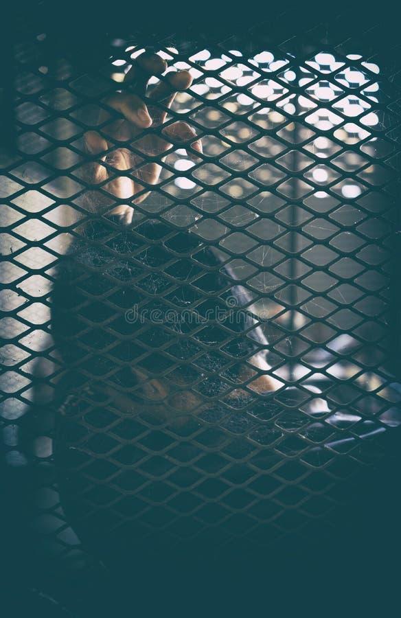 Hoffnungsloser Mann im Käfig lizenzfreie stockbilder