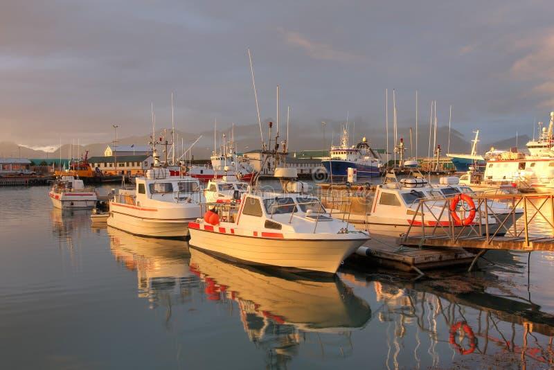 Hofn-Hafen, Island stockbild