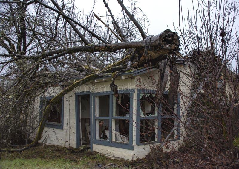 Hogar machacado por el árbol caido en Oregon imagenes de archivo