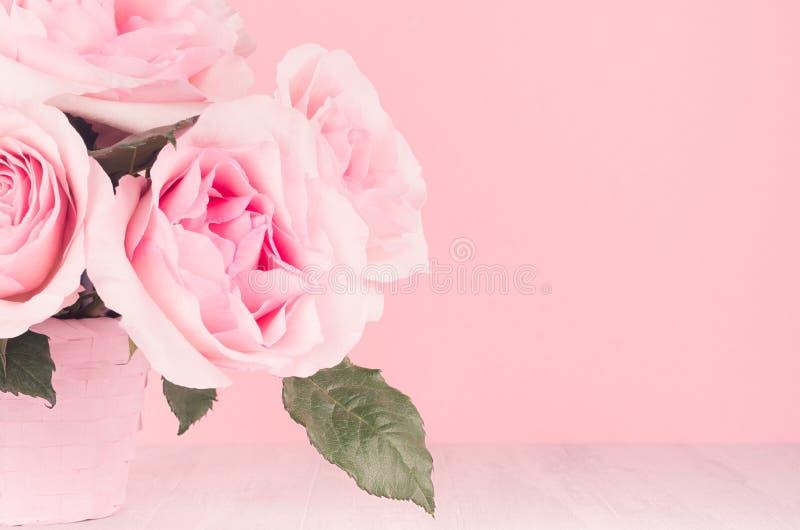 Hogar moderno de la moda interior en estilo elegante y rosas enormes coloridas rosadas en cesta en el tablero de madera blanco, e fotografía de archivo libre de regalías