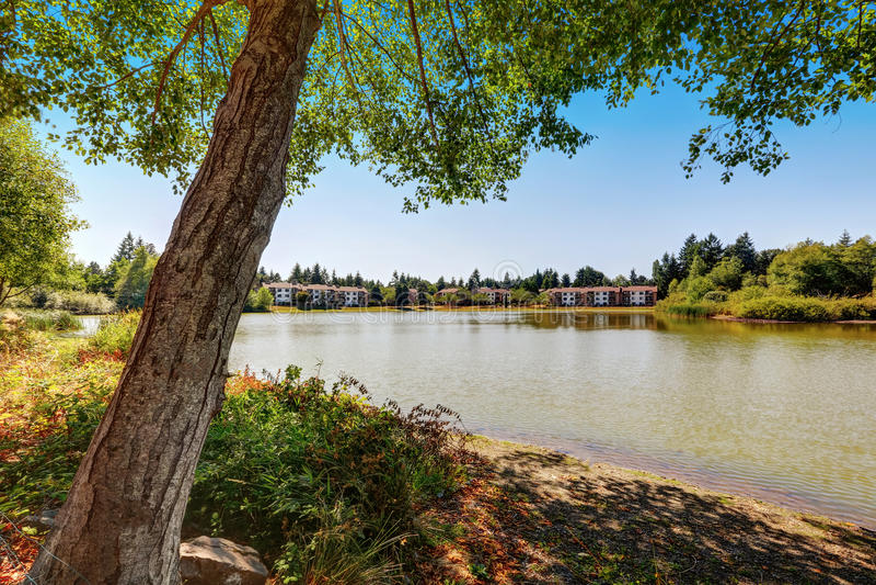 Hogares del apartamento de la propiedad horizontal que pasan por alto un pequeño lago imagenes de archivo