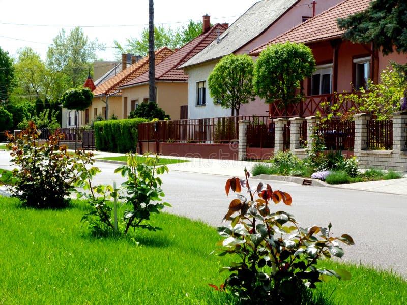 Hogares del pueblo a lo largo de una calle verde amistosa con los jardines enormes fotografía de archivo