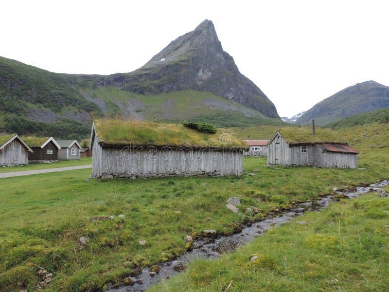 Hogares del tejado del césped en Geiranger, Noruega foto de archivo