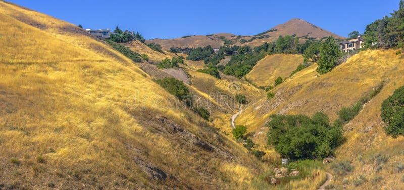 Hogares y pistas de senderismo entre las colinas herbosas foto de archivo libre de regalías