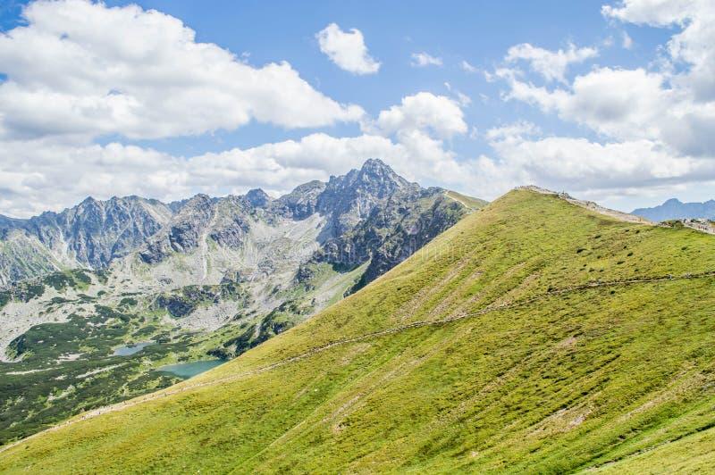 Hoge Bergen Tatra royalty-vrije stock fotografie
