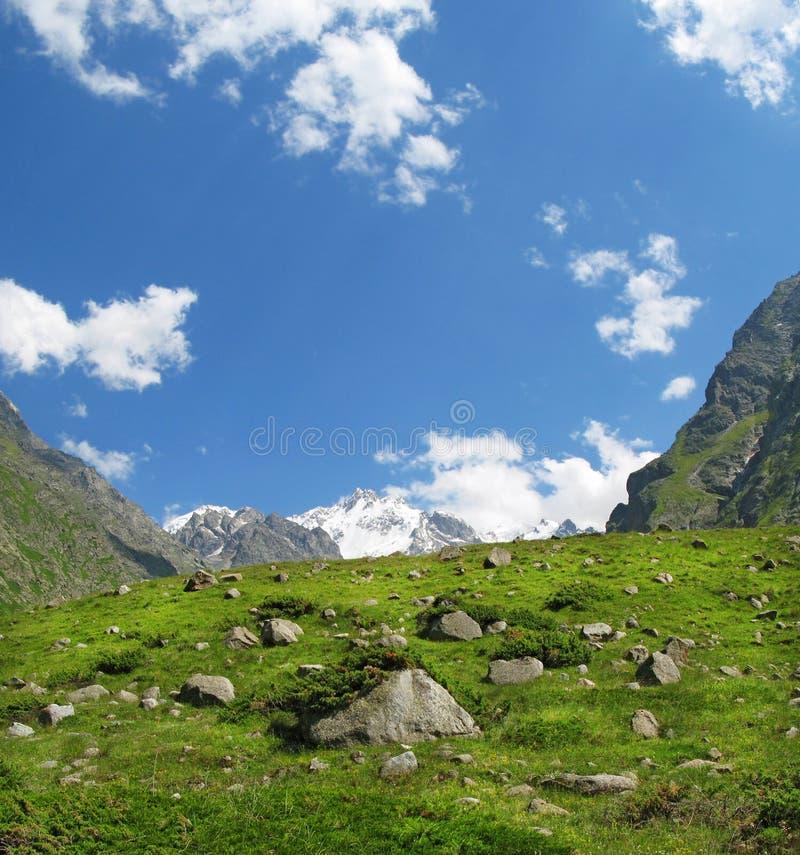 Hoge bergweide bij de berg Elbrus van de Kaukasus stock afbeelding
