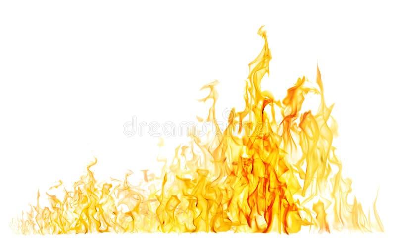 Hoge gele brand op wit royalty-vrije stock foto's