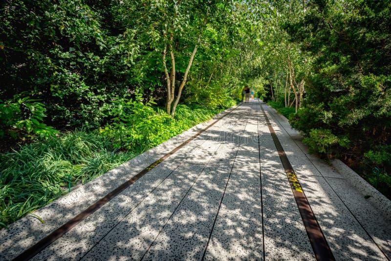 Hoge Lijnpromenade in de Zomer, Chelsea, de Stad van Manhattan, New York royalty-vrije stock foto