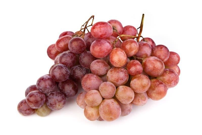 Hoge resolutiefoto van donkere druiven op wit stock afbeeldingen