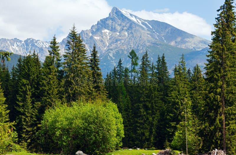 Hoge Tatras de lentemening (van Slowakije). royalty-vrije stock afbeelding