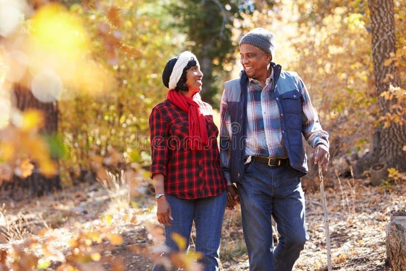Hoger Afrikaans Amerikaans Paar die door Dalingsbos lopen royalty-vrije stock afbeelding