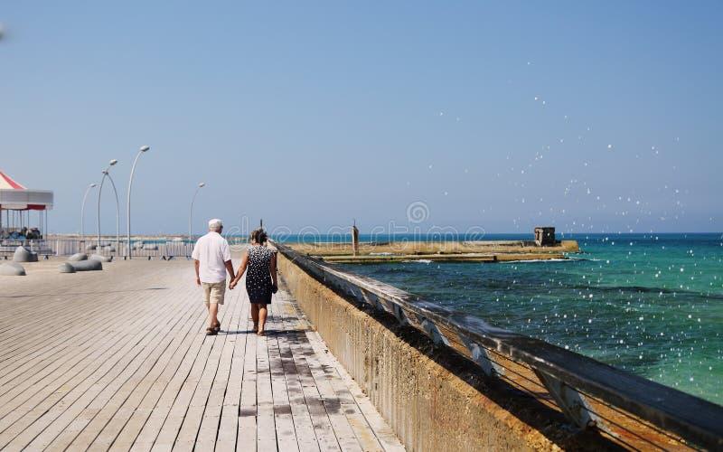Hoger paar dat op het strand loopt stock fotografie