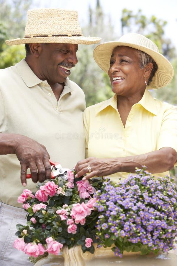 Hoger Paar dat samen tuiniert stock afbeelding