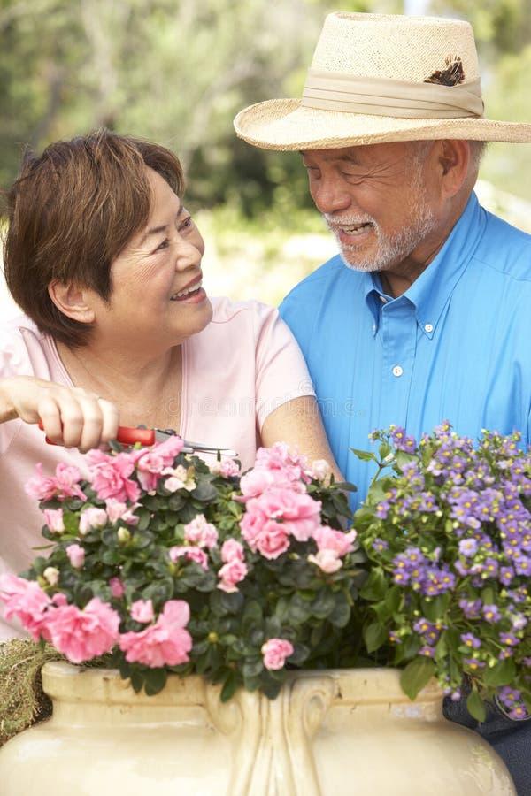 Hoger Paar dat samen tuiniert royalty-vrije stock afbeeldingen