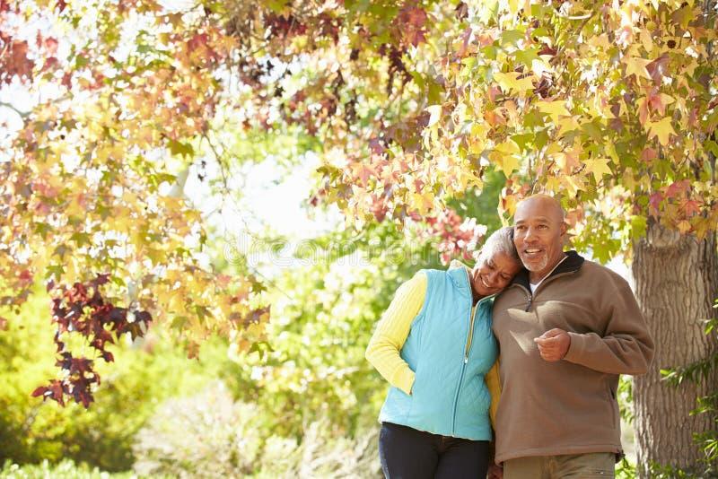 Hoger Paar die door Autumn Woodland lopen royalty-vrije stock foto's