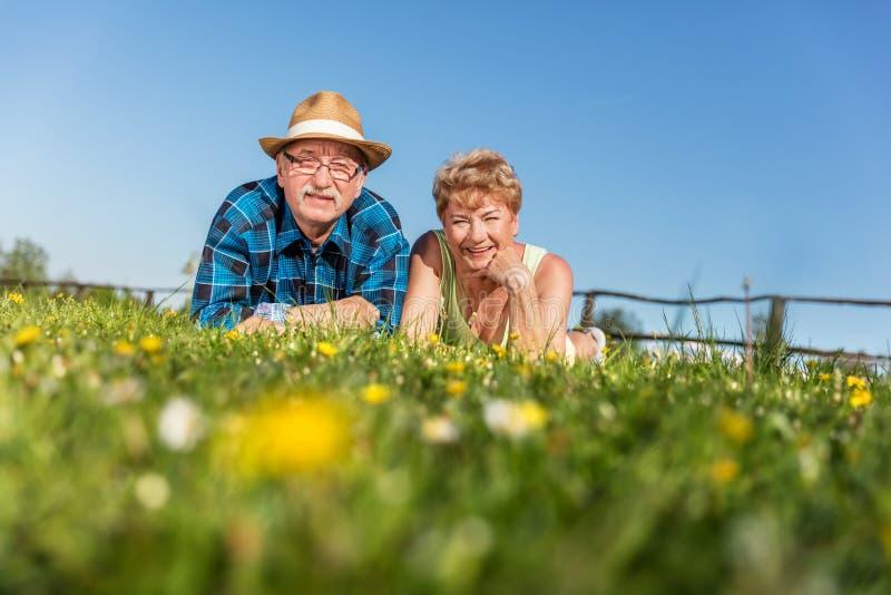 Hoger paar die op het de zomergebied in groen gras liggen royalty-vrije stock afbeelding