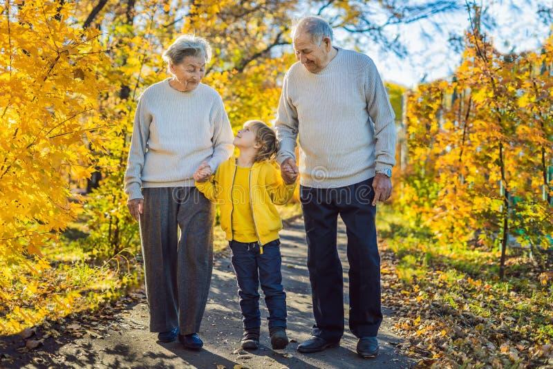 Hoger paar met babykleinzoon in het de herfstpark Groot-grootmoeder, groot-grootvader en groot-kleinzoon stock afbeeldingen