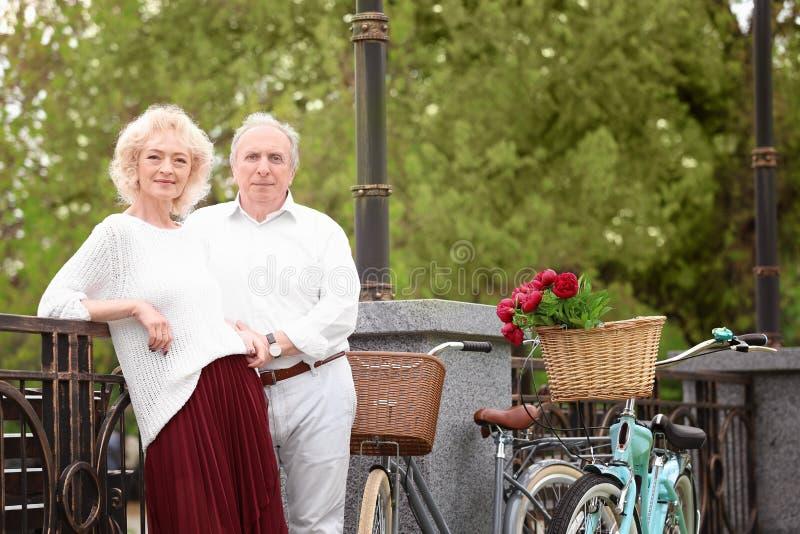 Hoger paar met fietsen die zich dichtbij omheining bevinden royalty-vrije stock fotografie