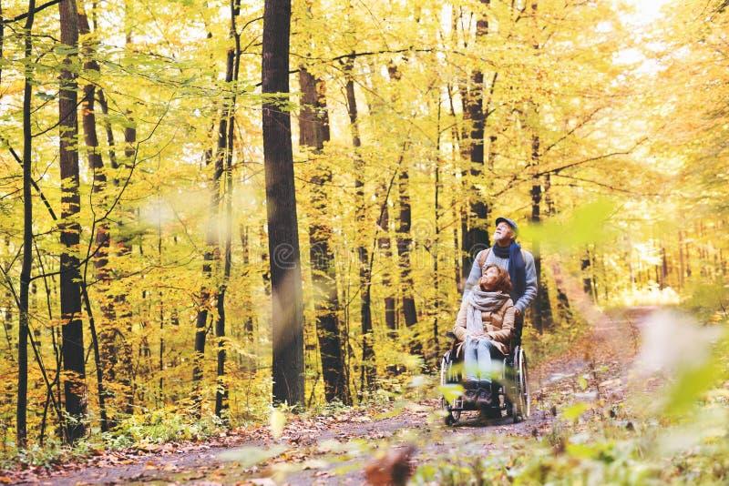 Hoger paar met rolstoel in de herfstbos stock foto
