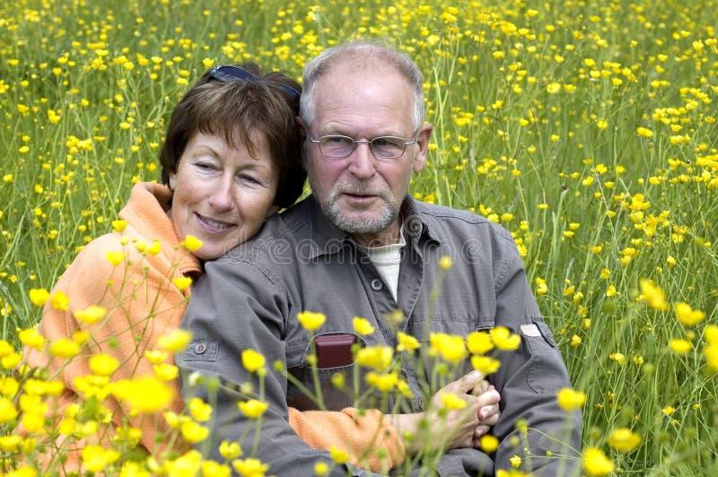 Hoger paar op een boterbloemengebied stock foto