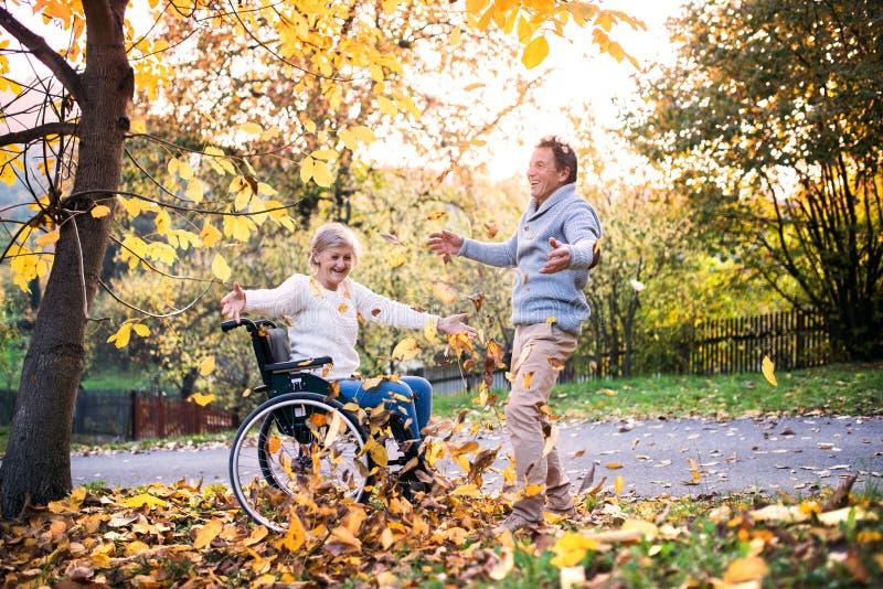 Hoger paar in rolstoel in de herfstaard royalty-vrije stock foto's