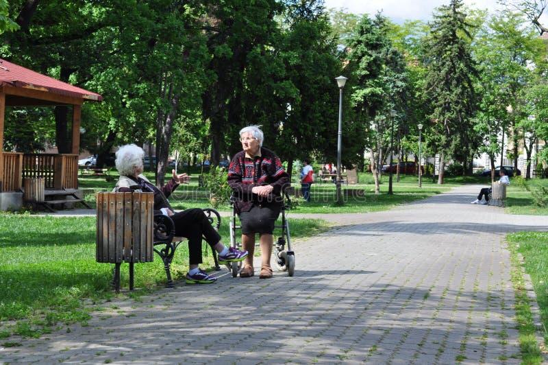 Hogere dames in park stock afbeeldingen