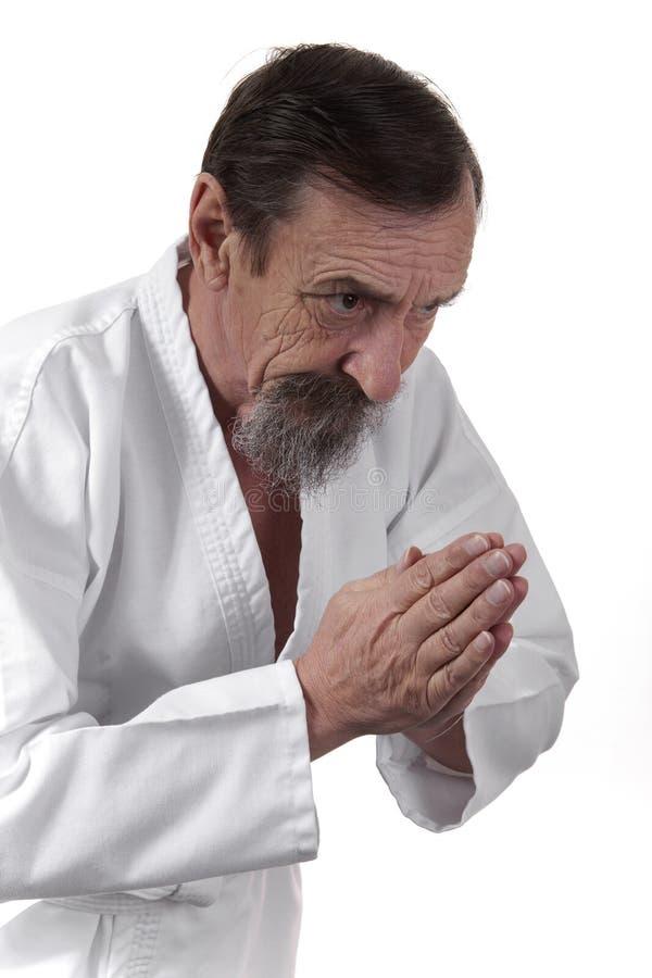 Hogere de karate praktizerende mens van de stokvoering royalty-vrije stock afbeelding
