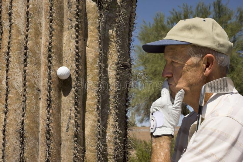 Hogere golfspeler royalty-vrije stock fotografie