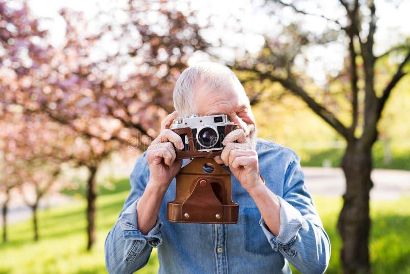 Hogere mens buiten in de lenteaard die beelden nemen stock fotografie