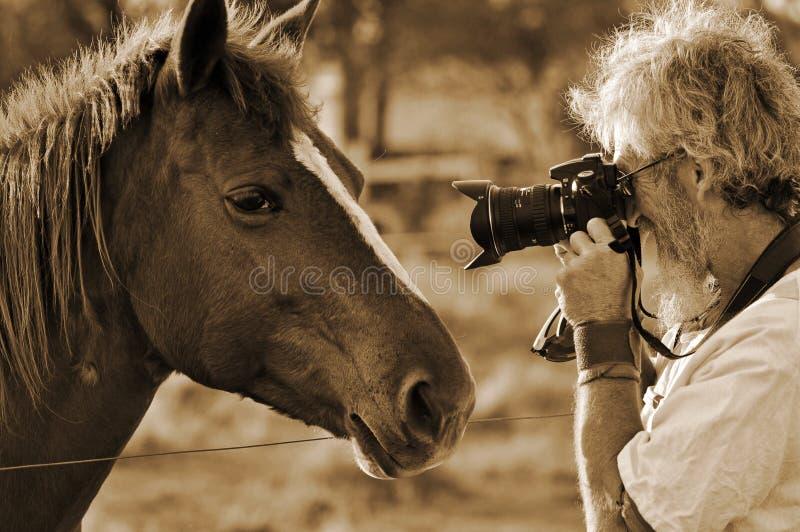 Hogere mens die het gezicht van close-uppaarden fotograferen royalty-vrije stock fotografie